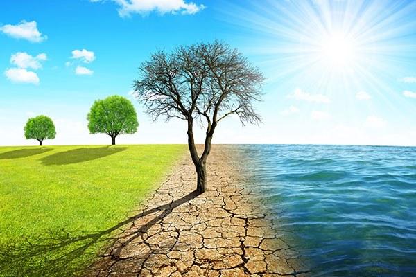 Cambiamento climatico - NL 21 marzo 2020
