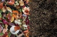 Biometano e compost, grande progetto green a Reggio Emilia