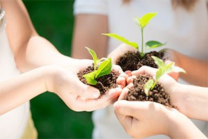 Educazione alla sostenibilità, proposte per il nuovo anno scolastico