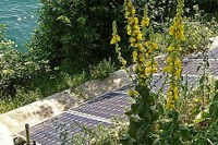 Energynius, innovazione nei sistemi energetici urbani